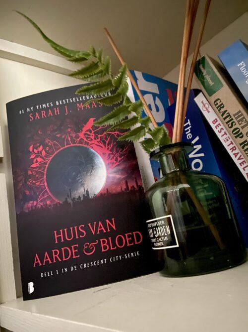Recensie: Trust Again – Mona Kasten